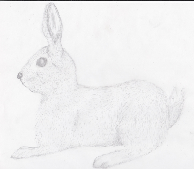 liggende hare