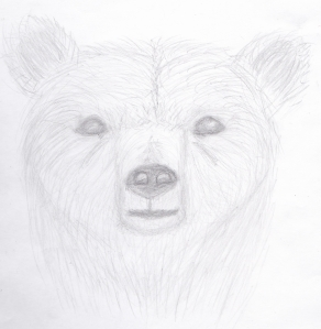 fantasi bjørn