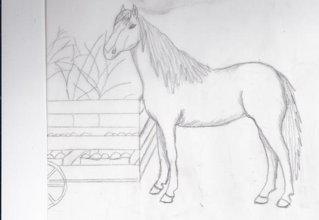 hest foran vogn