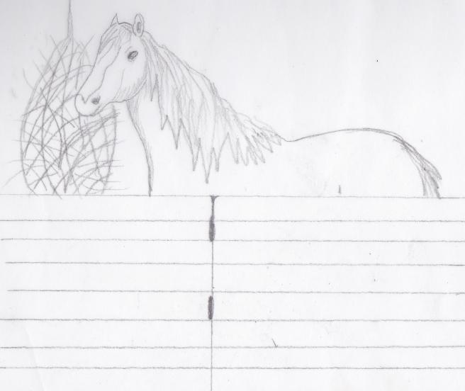hest i stallen